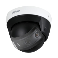 cctv_security_surveillance_camera_system_dahua_panoramic_dome
